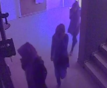 Adana Polisi 20 İlde Hırsızlık Yapan Kadınları Yakaladı