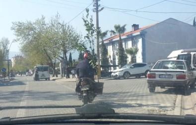 Ağaç Taşıyan Motosikletli Kamerada