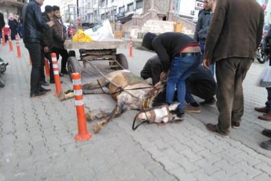 Atı Bayılınca Gazetecilere Saldırdı