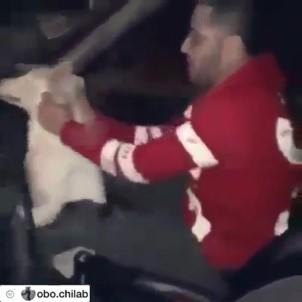 Köpeği vahşice yumruklayanlar tutuklandı!