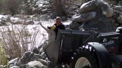 Nehirde Mahsur Kalan Köpek İş Makinesiyle Kurtarıldı