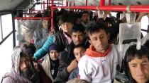 46 yolcu kapasiteli otobüste 165 kaçak yakalandı