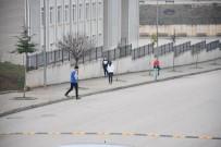 EĞİTİM KAMPÜSÜ - Oryantiring İl Şampiyonası Kupaları Sahiplerini Buldu