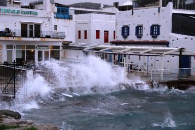 40 Türk Yunan adalarında mahsur kaldı