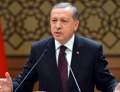 Erdoğan'dan milli sporcu Ünlüdağ'a tebrik