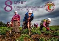 KADIN CİNAYETİ - Aydın Tabip Odası 8 Mart Kadınlar Günü'nü Kutladı