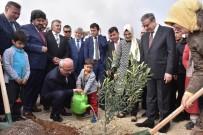 ALİ İHSAN SU - Bakan Elvan, 'Zeytin Dalı Harekatı' Şehitleri İçin Fidan Dikti