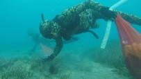 GÜNDOĞAN - Deniz Dibi Temizliği Turgutreis'te Devam Etti