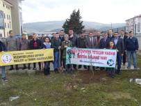 ŞEREF AYDıN - Havranlı Öğrencilerden Anlamlı Mesaj 'Tüm Dünyaya Yetecek Kadar Zeytin Dalımız Var!'
