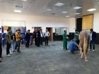 TÜRKIYE JOKEY KULÜBÜ - HRÜ Veteriner Fakültesi İle TJK Arasında İşbirliği Protokolü İmzalandı