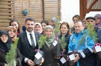 ULU CAMİİ - Kadınlar Günü'ne Özel Bin Adet Fidan Dağıtıldı