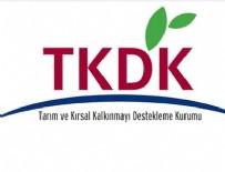 ADAY ÜLKELER - TKDK, bin 198 kadın girişimciye hibe verdi