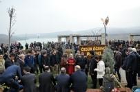 TUNCELİ VALİSİ - Tunceli'de Balık Ekmek Etkinliği