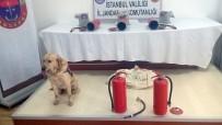 MIMARSINAN - Yangın Tüpü İçinde Uyuşturucu Sevkiyatına Jandarma Engeli