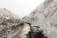 KÖY YOLLARI - Ağrı'da Köy Yolları Ulaşıma Açıldı