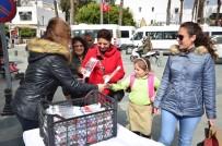 BODRUM BELEDİYESİ - Bodrum'da Kadınlara Kırmızı Karanfil