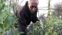 DÜNYA ÇOCUKLARI - Yerleşim Birimi Ve Beton Bariyerler Kıskacında Açık Hapishane Hayatı