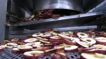 Afyonkarahisar'dan 13 Ülkeye 'Meyve Cipsi' İhracatı