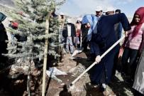 FATİH MEHMET ERKOÇ - Kahramanmaraş'ta Şehitler Adına Fidan Dikildi