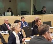 AVRUPA İNSAN HAKLARI - Yapay Zeka Ve İnsan Hakları Uzmanlar Komitesi Strazburg'da Toplandı
