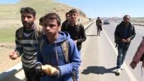 Afgan Mültecilerin Türkiye'ye Göçünde İran'ın Rolü
