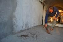 Kırkayakların İstilasına Uğrayan Köyün Çilesi Bitmiyor