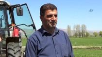 Muş'ta Çiftçiler Nohut Ekimine Erken Başladı