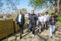 ŞAHAN GÖKBAKAR - Şahan Gökbakar Karacabey'e hayran kaldı