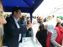 ÖZLEM ÇERÇIOĞLU - Aydın Büyükşehir Belediyesi Söke'de 50 Bin Fide Dağıttı