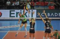 OLYMPIAKOS - CEV Challenge Kupası Olympiakos'un