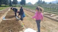 Çocuklar Aileleriyle Birlikte Hobi Bahçesi Oluşturdu