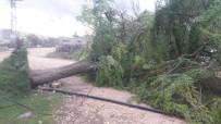 KARıNCALı - Şanlıurfa'da Sağanak Yağış Ve Şiddetli Rüzgar