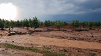 MEHMET METIN - Yağmur Ve Dolu Yağışı Kilis'te Büyük Hasara Yol Açtı