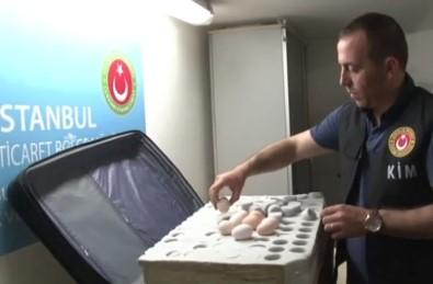 802 adet ejderha yumurtası ele geçirildi
