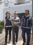 VARSAK - Antalya'da 3 Aylık Bebekle Hırsızlık