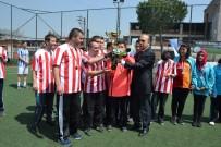 ÇAVUŞKÖY - Biga'da Minikler Futbol Turnuvası