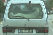 Keçilerin Minibüsle Yolculuğu