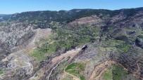 DAĞPıNAR - Muğla Zeytinköy Orman Yangınının İzleri Siliniyor