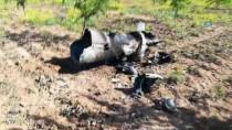 YAKIT TANKERİ - Şanlıurfa'ya Uçağın Yakıt Tankeri Düştü