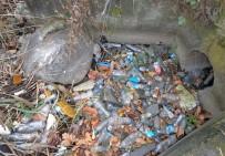 BUZDOLABı - Sapanca Gölü'nden 300 Torba Çöp Çıktı