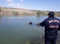 MALATYA ADLI TıP KURUMU - Balık Tutmaya Gittiği Çayda Boğuldu
