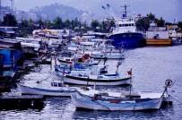 KALKAN BALIĞI - Denizlerde Av Yasağı Başlıyor