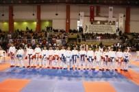 RECEP TOPALOĞLU - Karateciler 23 Nisan Coşkusu Yaşattı