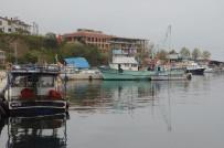 Ordulu Balıkçılar Sezondan Umduğunu Bulamadı