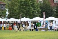 ÇÖREK OTU - Sapanca Belediyesi Festivallere Hazırlanıyor