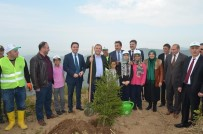 Trabzon'da Mülteci Çocuklar Fidan Dikti