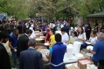 EYÜP EROĞLU - Üniversite Öğrencileri Bahar Şenliğinde Stres Attı