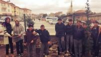 ÇAM AĞACI - 40 Öğrenci 40 Fidanı Toprakla Buluşturdu