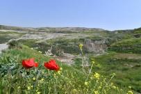 AYDINLATMA DİREĞİ - Biyogazdan Elektrik Elde Edilecek, 37 Hektar Ağaçlandırılacak