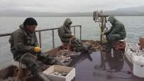 Van Gölü'nde Av Yasağı Başlıyor